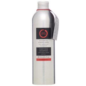 shampoo purificante aldo coppola prodotti capelli parrucchieri