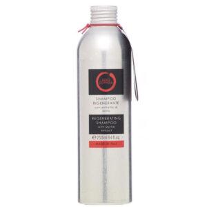 shampoo rigenerante aldo coppola prodotti capelli parrucchieri