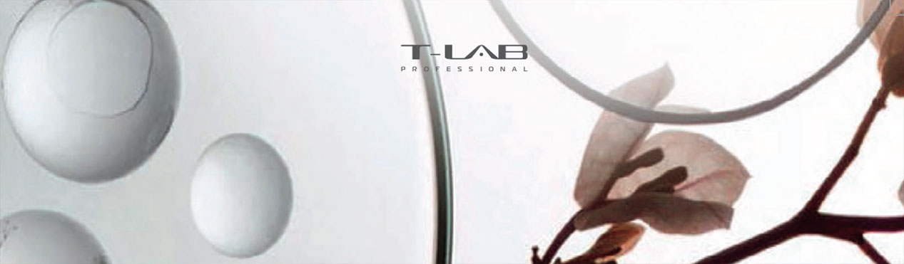 t-lab-professional