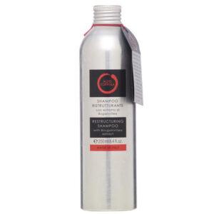 shampoo ristrutturante aldo coppola prodotti capelli parrucchieri